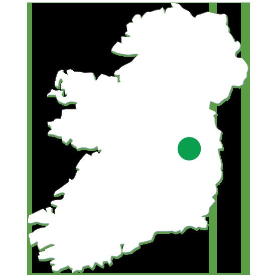 Irish Beef Made In Ireland